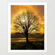 Tree of Fire Art Print