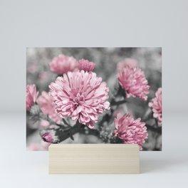 Blushing Gray Mini Art Print