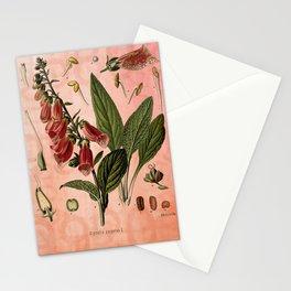 Vintage Botanical Illustration Collage, Foxgloves, Digitalis Purpurea Stationery Cards