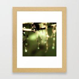 Spring Mist Framed Art Print
