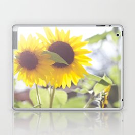 Sunflowers From My Mother-in-law's Garden Laptop & iPad Skin