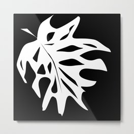 A white sheet of monstera on black background . Metal Print