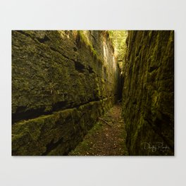 Nature's Secret Canvas Print