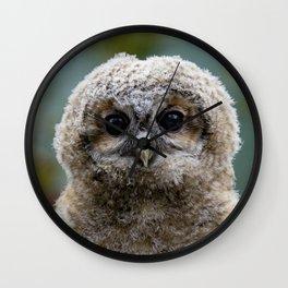 Owl_20180216_by_JAMFoto Wall Clock