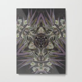 Purple Black Lime #2 Metal Print