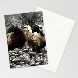 Graces Stationery Cards