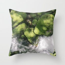Feel the Wetness in the Air Throw Pillow