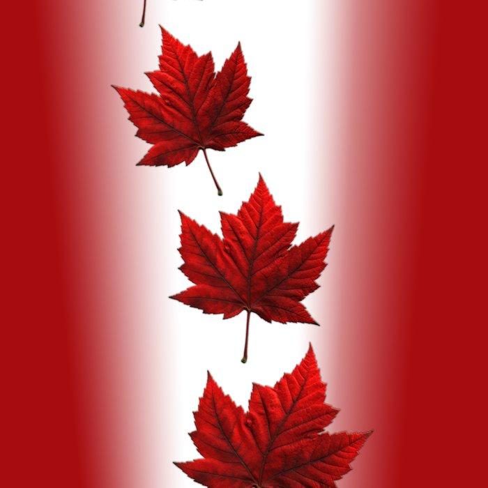Canada Souvenirs Leggings