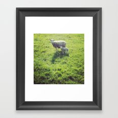 Ohsocute Framed Art Print
