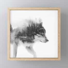 Wolf Stalking Framed Mini Art Print