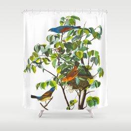 Blue Grosbeak James Audubon Vintage Scientific Illustration American Birds Shower Curtain