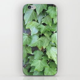 Ivy on Wooden Fence iPhone Skin