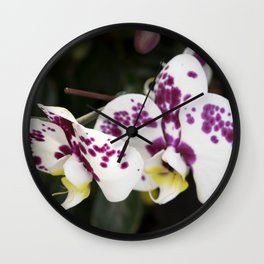 Longwood Gardens Orchid Extravaganza 24 Wall Clock