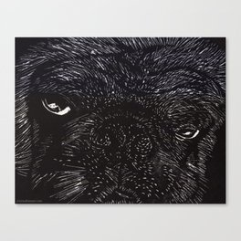 Big Willy Canvas Print