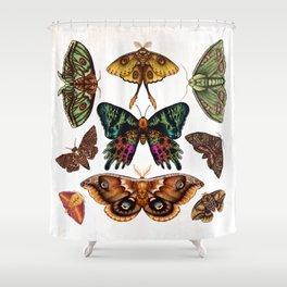 Moth Wings III Shower Curtain