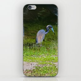 Disappearing in Plain Sight iPhone Skin