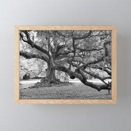 Tree of Life The De Bore Oak 1740 Framed Mini Art Print