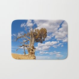 Bristlecone Pine at Bryce Canyon Bath Mat