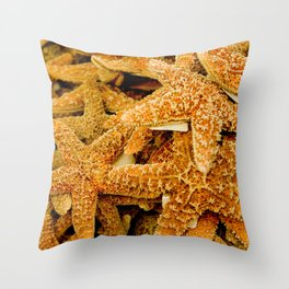 Summer Photo : Starfishes in Key West, FL Throw Pillow