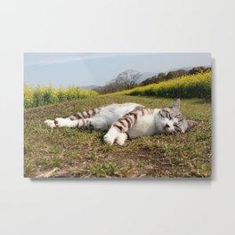Cat nap and broccolini Metal Print