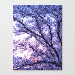 Periwinkle Lavender Flower Tree Canvas Print