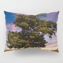 Summer Shade Pillow Sham