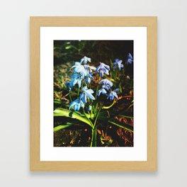 just a lovely flowers Framed Art Print