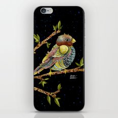 Positivity Bird 3 iPhone & iPod Skin