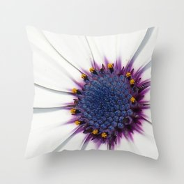 Beautiful White African Daisy Close-Up Macro  Throw Pillow