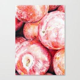 Fruit De Mars Canvas Print