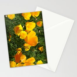 Orange Poppy Stationery Cards