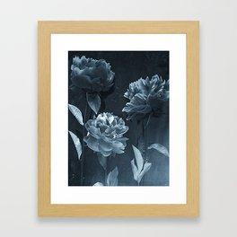 Blue Peonies Framed Art Print