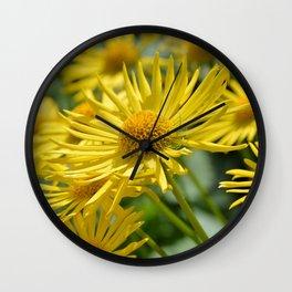 Yellow Doronicum Wall Clock