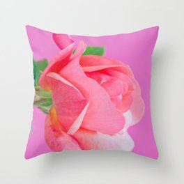 Macro pink rose flower Throw Pillow