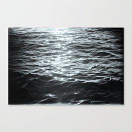 /sea. Canvas Print