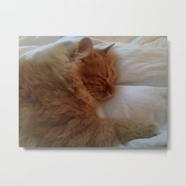 Furry Fwend Metal Print