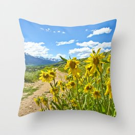 Vibrant trail Throw Pillow