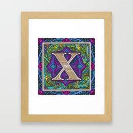 Xavi Xray Fish   Letter X Illustration Framed Art Print