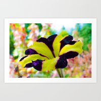 The Big Flower Art Print