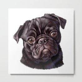 Autumn Pug Metal Print