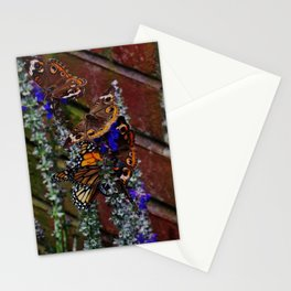 Multiple Butterflies Stationery Cards