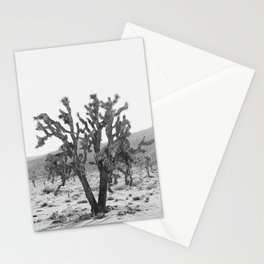 Joshua Trees in the Mojave Desert Stationery Cards