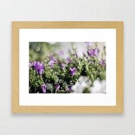 ...simplicity... Framed Art Print