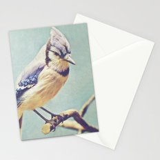 Virginia Bluejay Stationery Cards