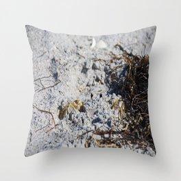 San Shroud Throw Pillow