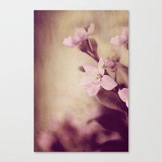Pink Sentiments Canvas Print