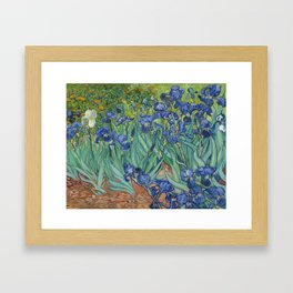 Irises by Vincent van Gogh Framed Art Print