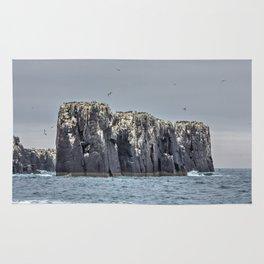 The Farne Island cliffs Rug