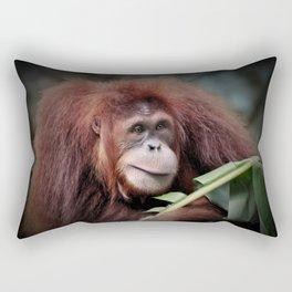 Orangutan Indah Rectangular Pillow