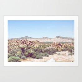 Joshua Tree, No. 2 Art Print